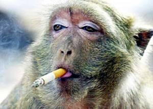 having_a_smoke